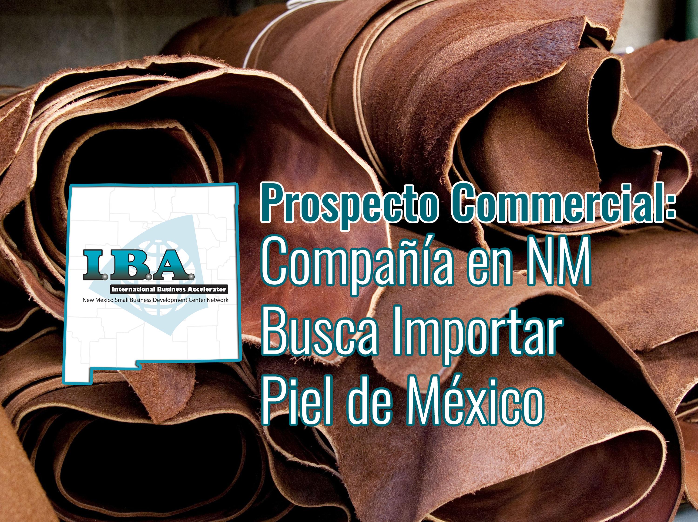 Prospecto comercial - Compañía en NM Busca Importar Piel de México